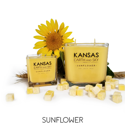 Sunflower Soy Candles