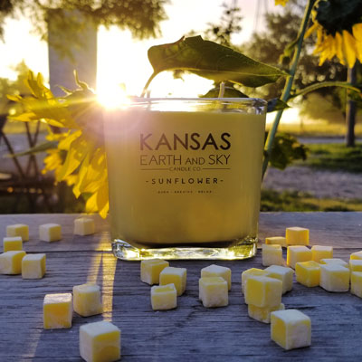 sunflower-kansas candle-12oz