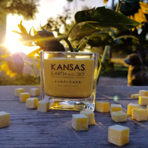 sunflower-kansas candle-3.5oz