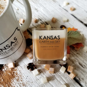 pumpkin spice latte soy candle small