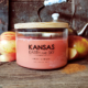 hot cider soy candle 24oz 3 wick