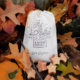 Jack O Lantern soy wax melts